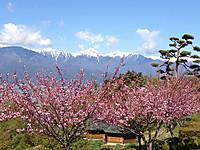 Alpuspark